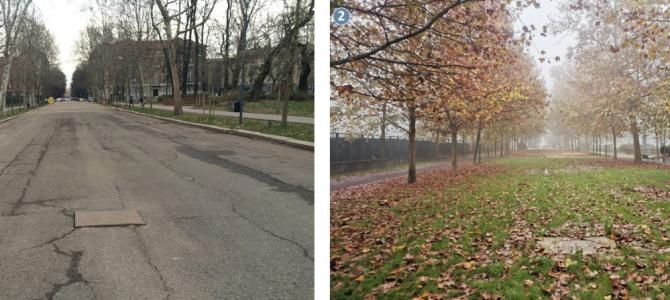 Giornata mondiale del suolo. A Milano oltre 27mila metri quadrati di aree depavimentate negli ultimi mesi. Da via Bach alle ciclabili e le piazze, tanti interventi realizzati