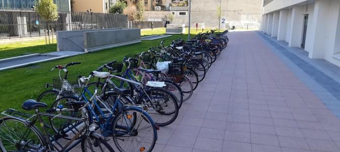 Come cambia la città: sempre più persone abbracciano la mobilità sostenibile